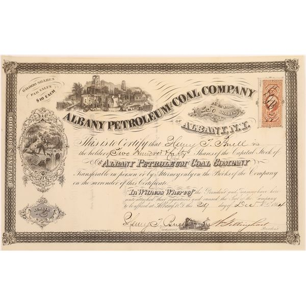 Albany Petroleum and Coal Company of Albany N. Y. Stock, 1864  [130527]