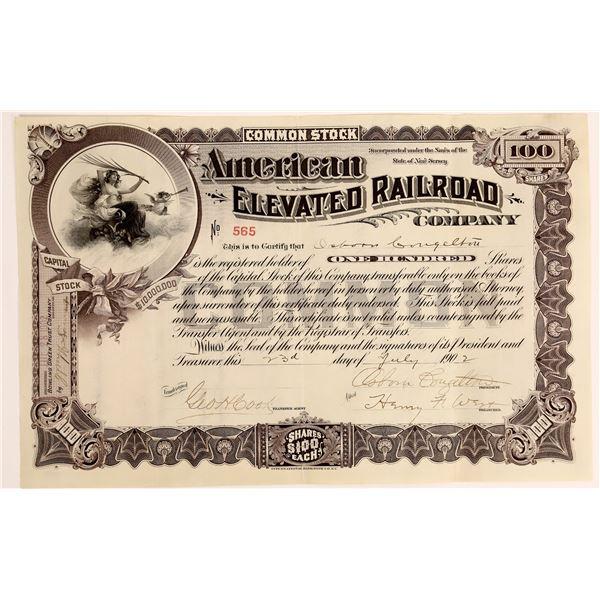 American Elevated Railroad Stock, 1902  [130575]