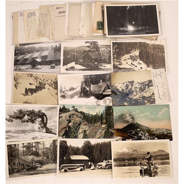 Big Trees / Yosemite / High Sierra Post Card Collection  [130440]