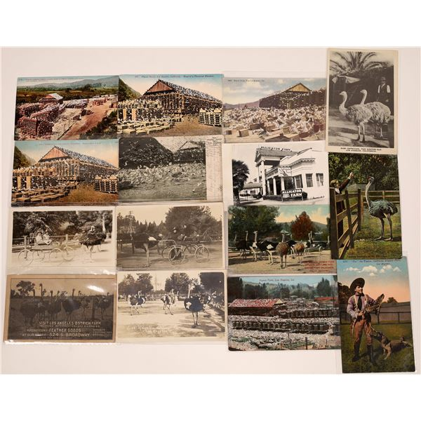 Los Angeles Area Bird and Animal Farms Postcard Collection  [139081]