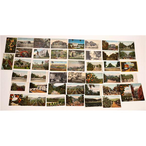 Pasadena Area Vintage Post Card Collection (40 pieces)  [138222]