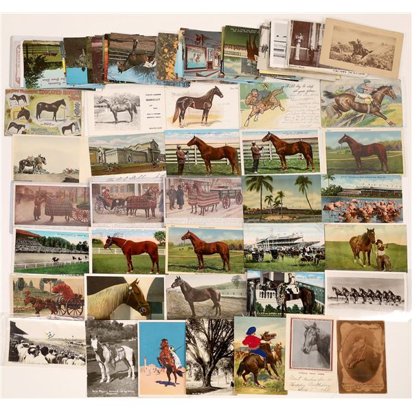 Horses Post Card Collection (84)  [139058]