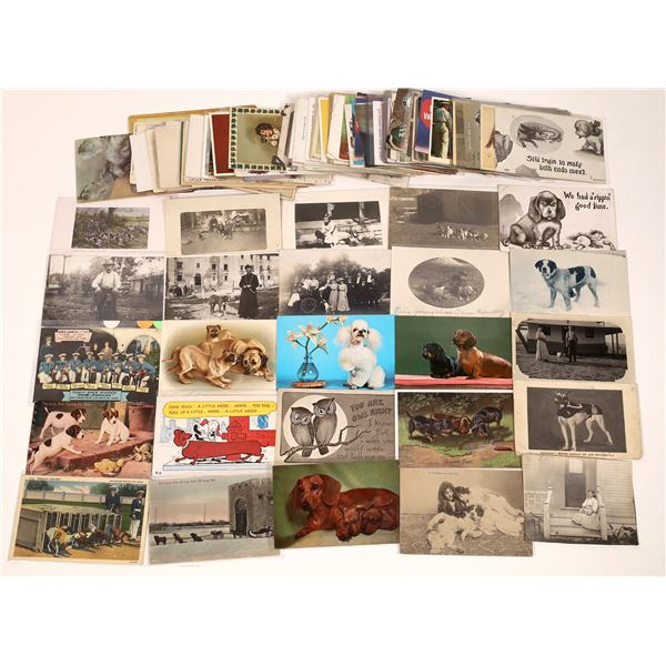 Large Dog Postcard Collection  [139103]