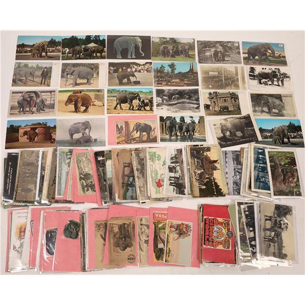 Postcard Collection: Elephants  [136223]
