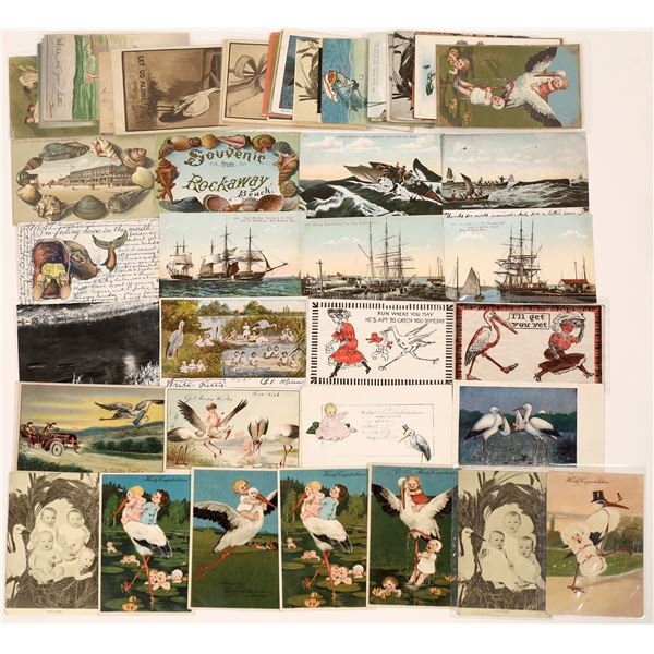 Marine Life Postcard Collection featuring Storks!  [130342]