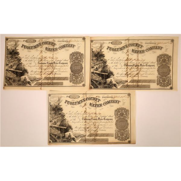 3 Tuolumne County Water Co. Stocks Signed by D. O. Mills  [130246]