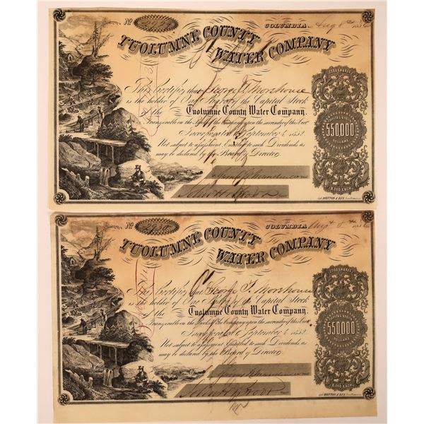 2 Tuolumne County Water Co. Stocks Signed by D. O. Mills  [130244]