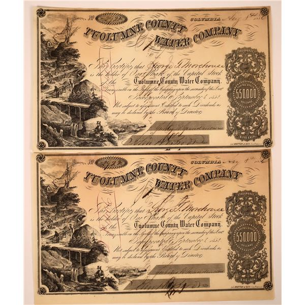 2 Tuolumne County Water Co. Stocks Signed by D. O. Mills  [130243]