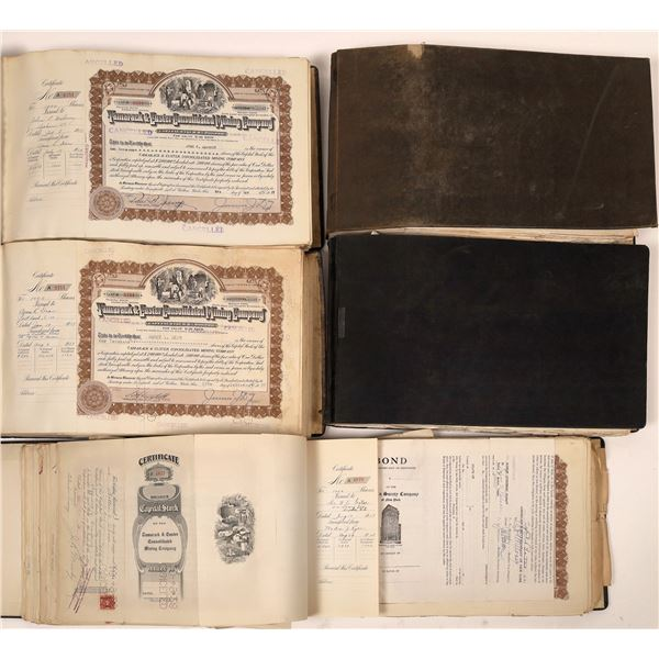 Tamarack & Custer Consolidated Mining Company Stock Certificates (1250)  [139496]