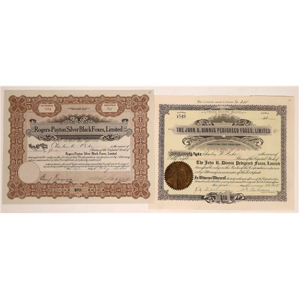 Two Fox Company Stock Certificates from Prince Edward Island  [128801]