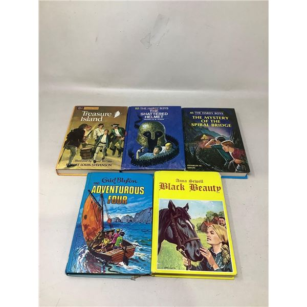 Assorted Lot Of Hard Copy Books