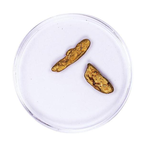 2.65 Gram Gold Nugget