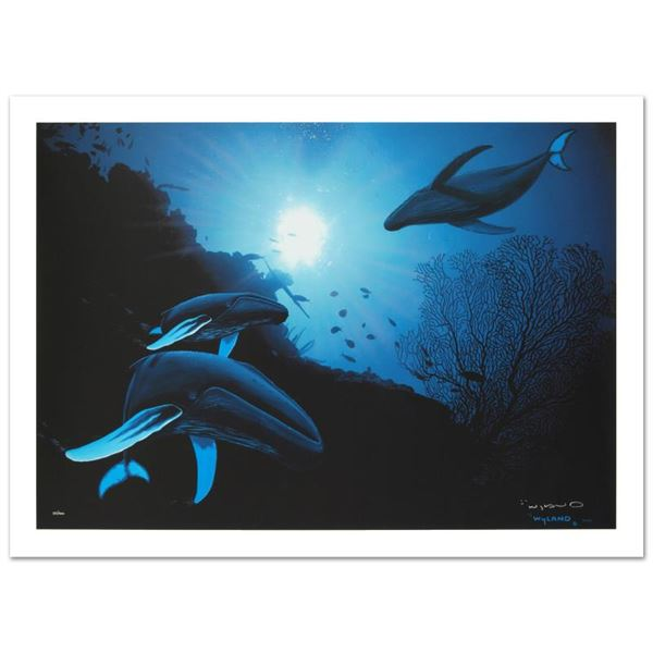 """Wyland """"Whale Vision"""" Limited Edition Giclee On Canvas"""