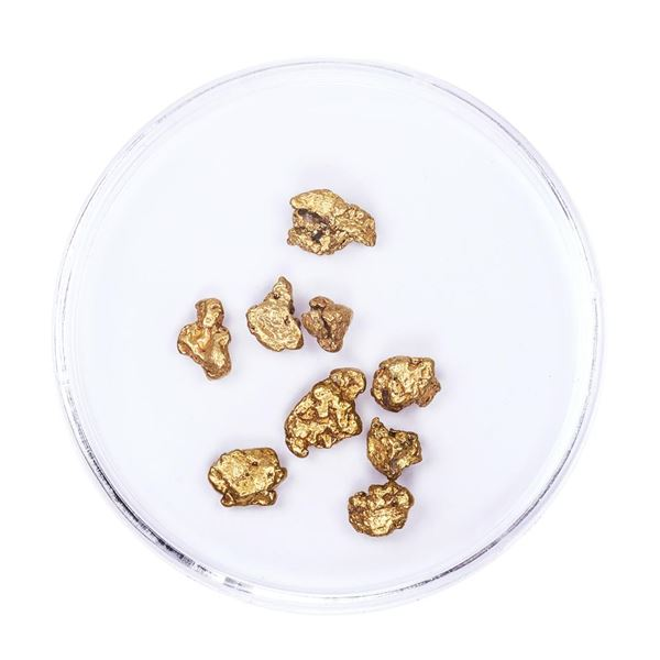 Lot of Gold Nuggets 3.54 grams Total Weight