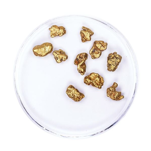 Lot of Gold Nuggets 5.04 grams Total Weight