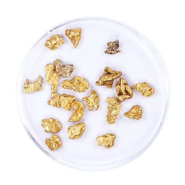 Lot of Gold Nuggets 4.33 Grams Total Weight