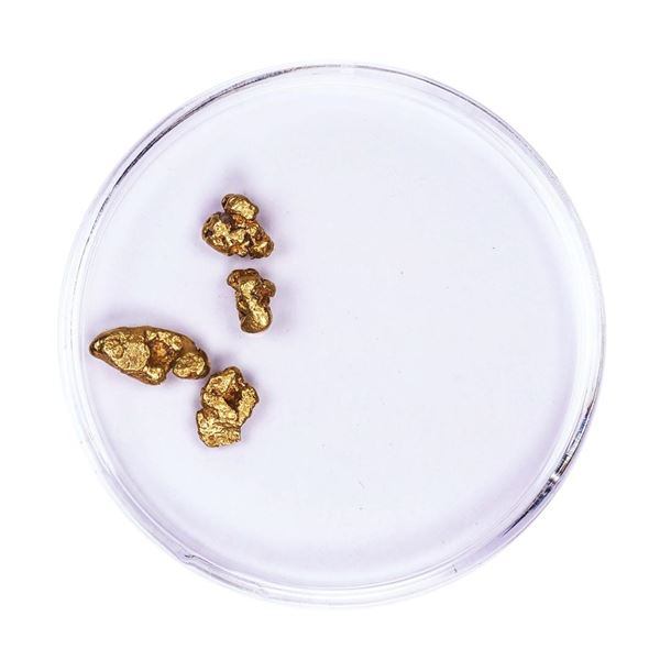 Lot of Gold Nuggets 1.90 grams Total Weight