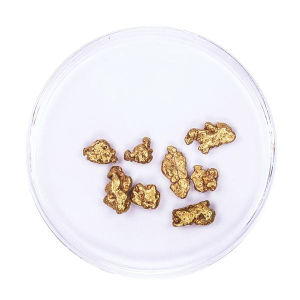 Lot of Gold Nuggets 3.34 grams Total Weight