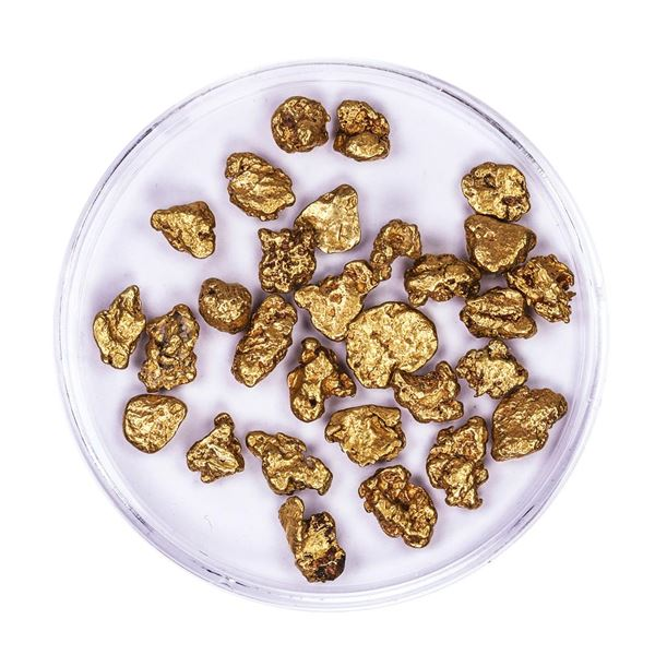 Lot of Gold Nuggets 10.14 grams Total Weight