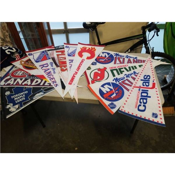 12 NHL SPORTS PENNANTS