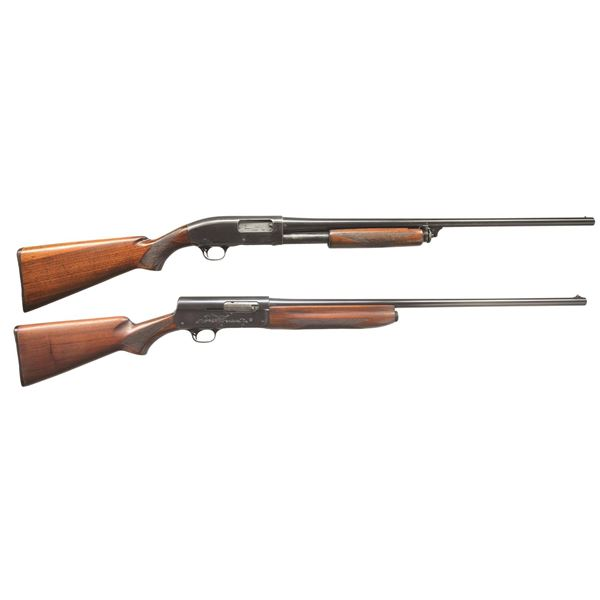 REMINGTON MODEL 31 & 11 SPORTSMAN SHOTGUNS.