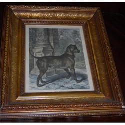Antique German Mastiff Dog Print C. 1880 #2370953