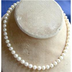 Necklace - Akoya Pearls  #2353666