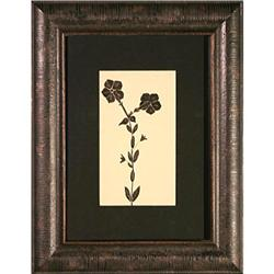 Petunias flowers watercolor signed Neill #2353687