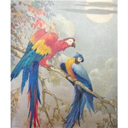 Magnificent French Oil Painting, Tropical Bird #2390814