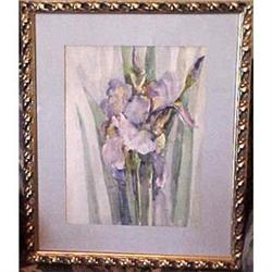 Iris Watercolor by Florence Upson Young #2391253