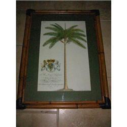 Pair of Royal Palm Prints Bamboo Frames! #2391353