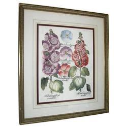 Hortus Eystettensis Botanical Engraving #2381662
