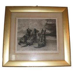 1899 MAUD EARL Cairn Terrier Engraving #2381681