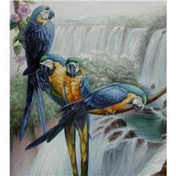 LG OIL PAINTING OF BLUE & GOLD MACAW #2394577