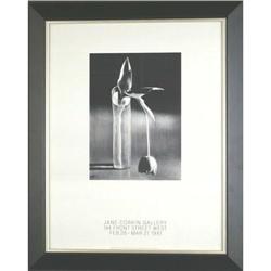 Kertesz  Melancholic Tulip poster photograph #2365532