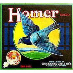 15 VINTAGE BIRD CITRUS CRATE LABELS  / HOMER #2376955