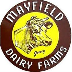 OLD VINTAGE MAYFIELD DAIRY JERSEY COW SIGN   #2376977
