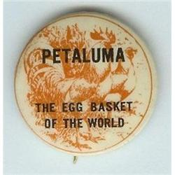 ANTIQUE 1920s PETALUMA EGG ROOSTER PINBACK PIN #2377086
