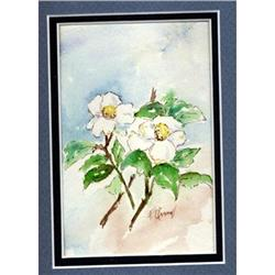"""Watercolor """" Dogwood Blossoms"""" Frances OConnell#2378146"""