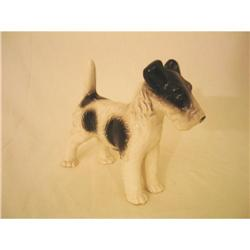 Beautiful German Fox Terrier Black/White #2378238