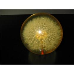 Lucite paperweight with dried flower inset! #2360064
