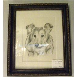 Drawing of Collie Dog #2380435