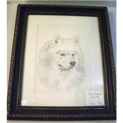 Samoyed Dog Drawing #2380440