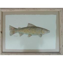 "Watercolor by Rhea Metcalf: ""Brown Trout"" #2364466"