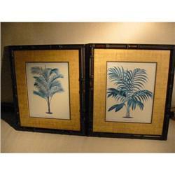 """Hawaiian Prints """"Calamus Asperrimus"""" Ferns! #2378731"""