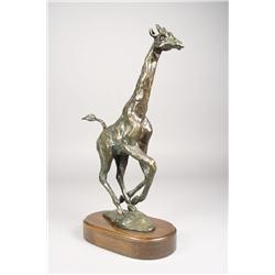 Laurence Isard (Cleveland, 1932-) Maasai Giraffe, Bronze, Si