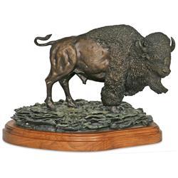 Dan Paulsrud, bronze