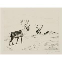Carl Rungius etching