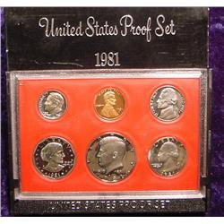 1981 S U.S. Proof Set. Original as issued.