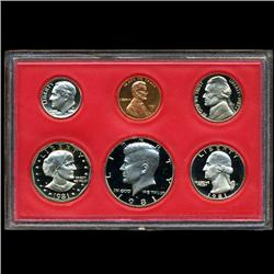 1981 US Proof Set Super Gem Coins UNSEARCHED  (COI-2481)